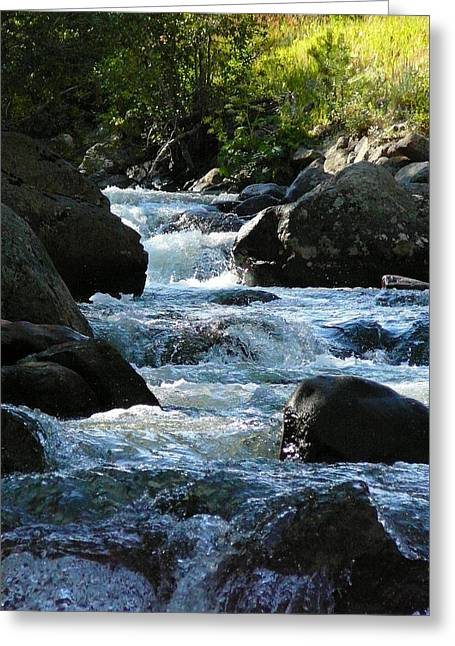 Colorado Mountain Posters Greeting Cards - Mountain River Greeting Card by Debbie Poetsch