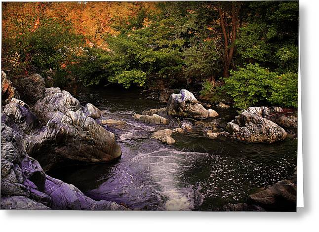 Sunshine Pyrography Greeting Cards - Mountain River With Rocks Greeting Card by Radoslav Nedelchev