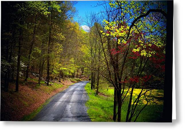 Mountain Road Greeting Cards - Mountain Road in WV Greeting Card by Joyce Kimble Smith