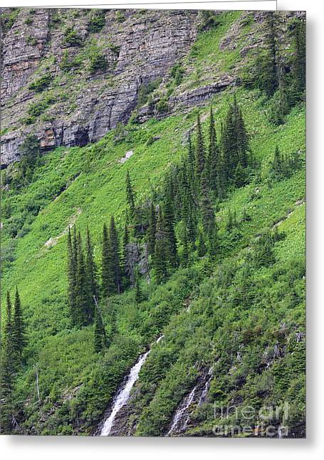 Mountainside Art Greeting Cards - Mountain Slope Greeting Card by Carol Groenen