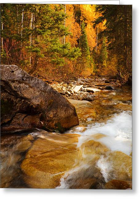 Little Cottonwood Canyon Greeting Cards - Mountain Stream in Autumn Greeting Card by Utah Images