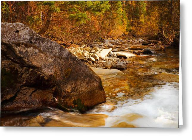 Mountain Stream in Autumn Greeting Card by Utah Images