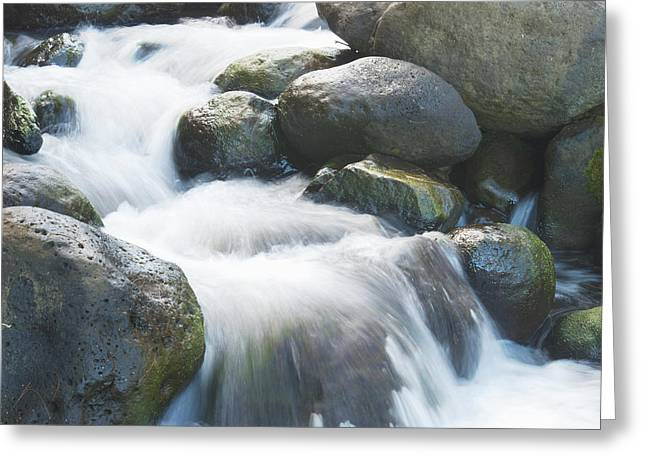 Quite Greeting Cards - Mountain stream Kauai Greeting Card by Michael Peychich