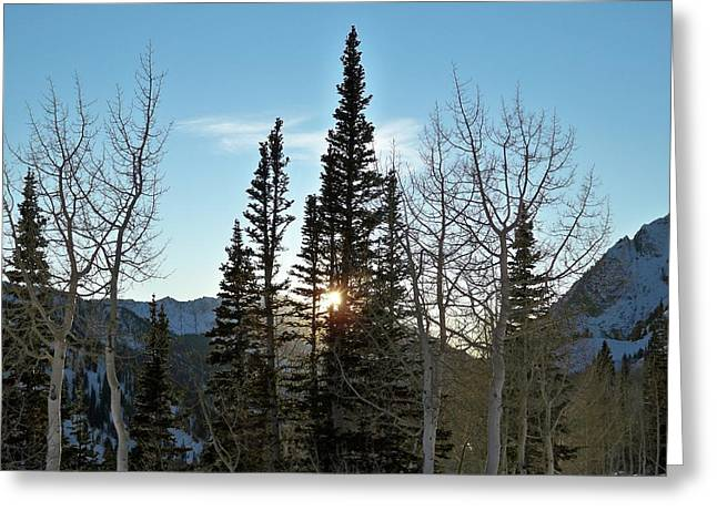 Landscape Photographs Greeting Cards - Mountain Sunset Greeting Card by Michael Cuozzo