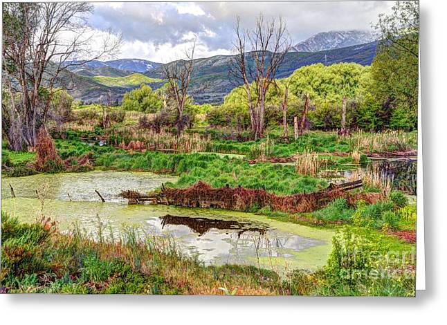 Heber Springs Greeting Cards - Mountain Valley Marsh - HDR Greeting Card by Gary Whitton