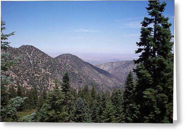 Mountain View Greeting Card by Steve Huang