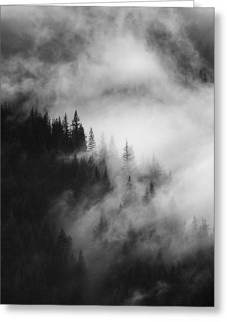 Forests Greeting Cards - Mountain Whispers Greeting Card by Mike  Dawson