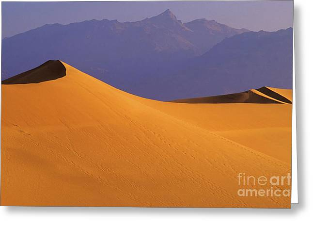 Mountains Of Sand Greeting Cards - Mountains Of Sand Greeting Card by Bob Christopher