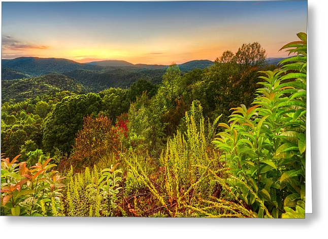 Mountaintop. Trees Greeting Cards - Mountainside Greeting Card by Debra and Dave Vanderlaan