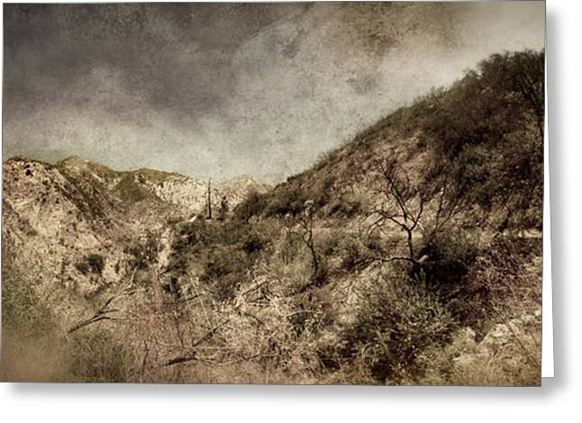 Angeles Forest Greeting Cards - Mountainside  Greeting Card by Torgeir Ensrud