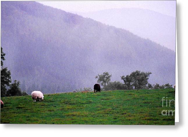 Raining Down Greeting Cards - Mourn Mountains Approaching Rain Greeting Card by Thomas R Fletcher