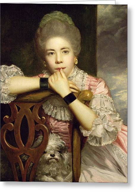 Oil Portrait Photographs Greeting Cards - Mrs Abington as Miss Prue in Congreves Love for Love  Greeting Card by Sir Joshua Reynolds