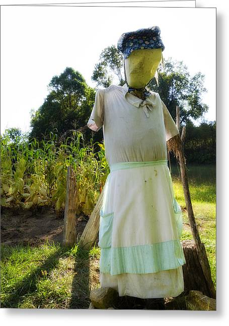 Hurting Head Greeting Cards - Mrs Scarecrow Greeting Card by Steve Hurt