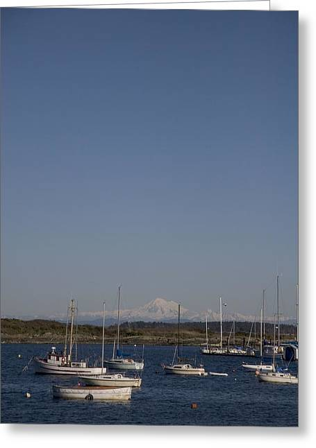 Mt Baker Looms Over A Harbor Full Greeting Card by Taylor S. Kennedy