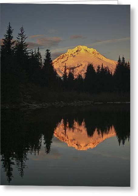 Mt Greeting Cards - Mt Hood Alpenglow II Greeting Card by Albert Seger