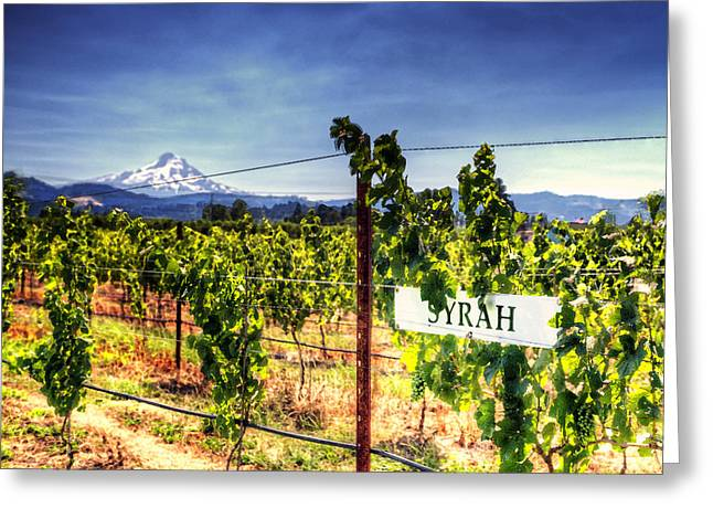 Syrah Photographs Greeting Cards - Mt Hood Winery Greeting Card by Vicki Jauron