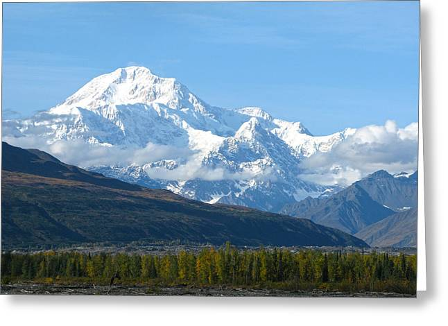 Sinrise Greeting Cards - Mt McKinley Alaska  Greeting Card by Sam Amato