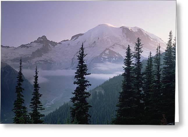 Mt Rainier As Seen At Sunrise Mt Greeting Card by Tim Fitzharris
