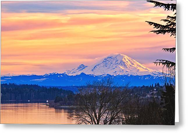 Pacific Northwest Greeting Cards - Mt Rainier from Lake Washington Greeting Card by Alvin Kroon