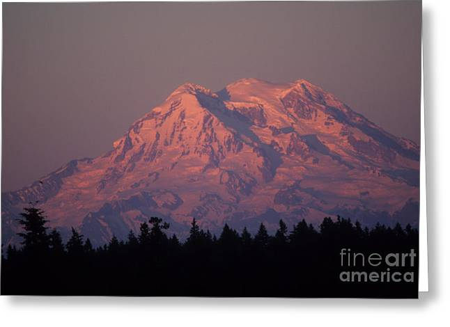 Mt. Rainier Washington Greeting Card by Robert  Torkomian