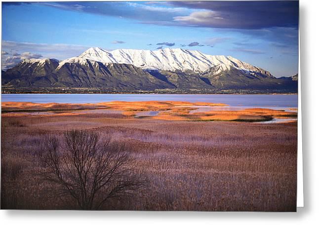 Mt. Timpanogos and Utah Lake Greeting Card by Utah Images