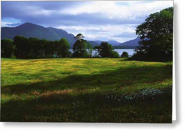 Muckross Lake, Killarney National Park Greeting Card by The Irish Image Collection