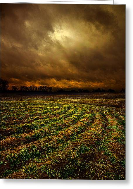 Geographic Greeting Cards - Mud Greeting Card by Phil Koch