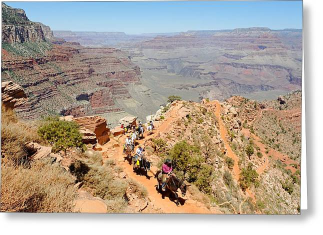 South Kaibab Trail Greeting Cards - Mules on a Switchback Greeting Card by Julie Niemela