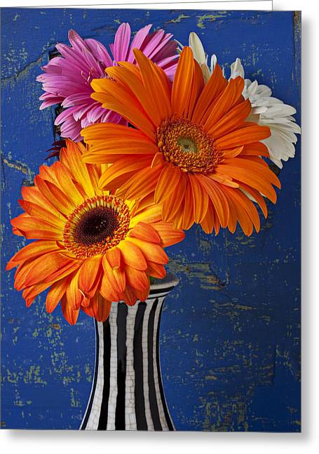 Mum Greeting Cards - Mums in striped vase Greeting Card by Garry Gay