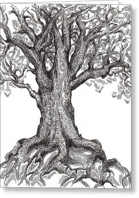 Tree Roots Drawings Greeting Cards - Musical Roots Greeting Card by Holly Stone