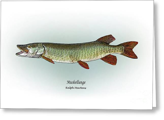 Muskie Greeting Cards - Muskellunge Greeting Card by Ralph Martens