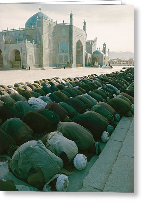 Reverence Greeting Cards - Muslims Praying In Afghanistan Greeting Card by Thomas J. Abercrombie