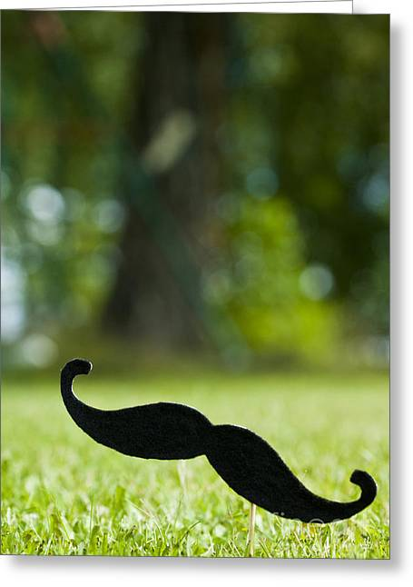Mustaches Photographs Greeting Cards - Mustache on stick 12 Greeting Card by Micah May