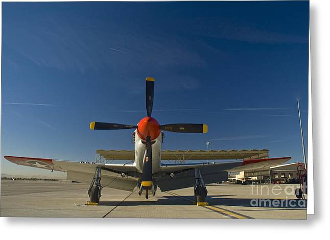 Usaf Greeting Cards - Mustang Greeting Card by Tim Mulina