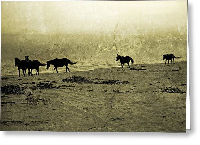 Mustangs Greeting Card by Betsy C Knapp
