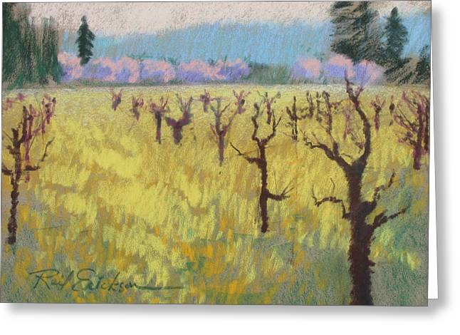 Napa Valley Vineyard Pastels Greeting Cards - Mustard Vines Greeting Card by Reif Erickson