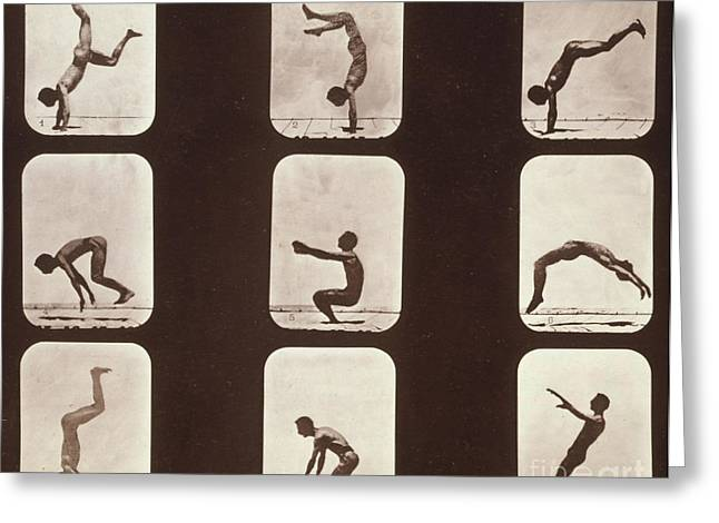 Muybridge Photographs Greeting Cards - Muybridge Locomotion Back Hand Spring Greeting Card by Photo Researchers