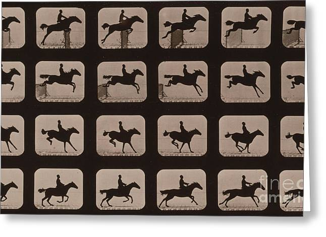 Muybridge Photographs Greeting Cards - Muybridge Locomotion Horse Leaping Greeting Card by Photo Researchers