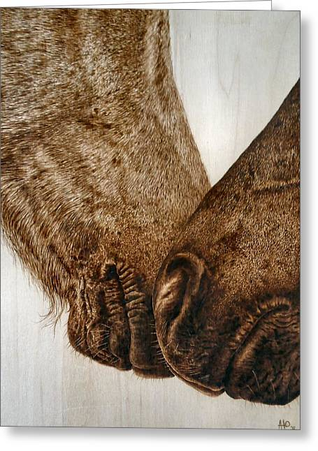 Wild Horse Pyrography Greeting Cards - Muzzle Nuzzle Greeting Card by Adam Owen