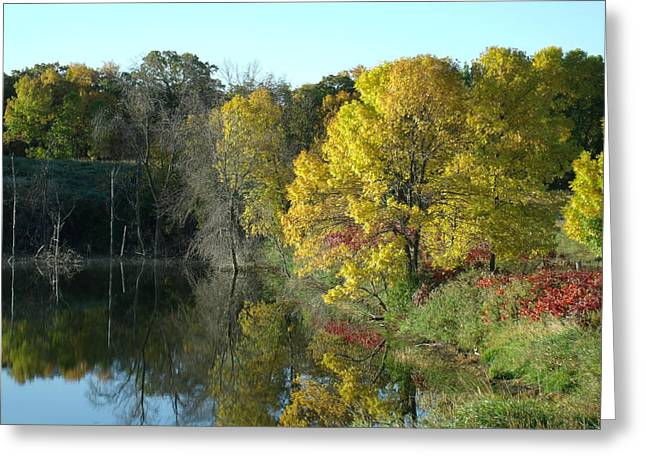 Focal Color Art Greeting Cards - My Autumn Splendor Greeting Card by Brian  Maloney