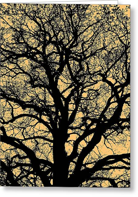 Sonne Greeting Cards - My Friend - The Tree ... Greeting Card by Juergen Weiss