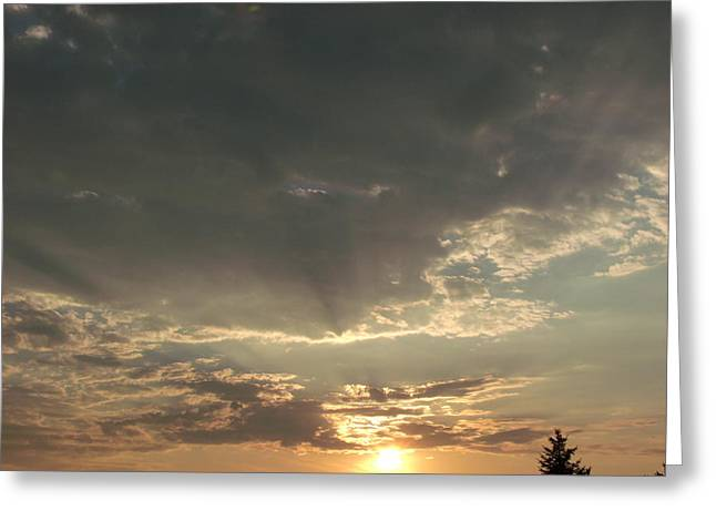 My Golden Sunrise Greeting Card by Brian  Maloney