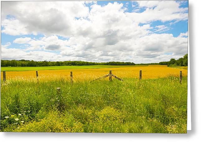 Manitoulin Greeting Cards - My Island. Greeting Card by Kelly Nelson