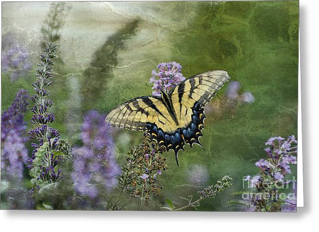 Indiana Flowers Greeting Cards - My Mothers Garden - D007041 Greeting Card by Daniel Dempster