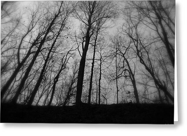 Indiana Landscapes Digital Art Greeting Cards - My Naked Friends Greeting Card by Ed Smith