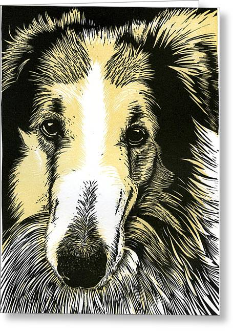 Collie Mixed Media Greeting Cards - My old friend Otis Greeting Card by David Esslemont