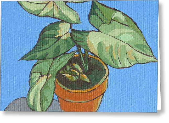 Philodendron Greeting Cards - My Plant at Work Greeting Card by Sandy Tracey