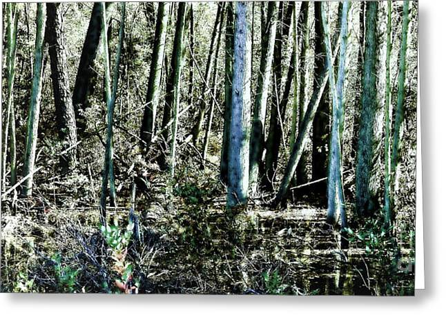 Mystery Photographs Greeting Cards - Mystery Forest Greeting Card by Olivier Le Queinec