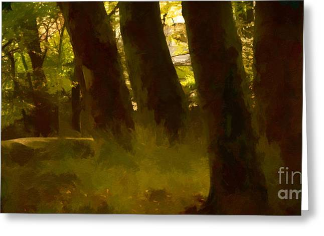 Mystery Photographs Greeting Cards - Mystery Woods Greeting Card by Lutz Baar