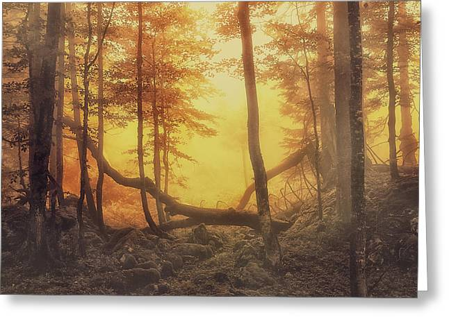 Organe Greeting Cards - Mystical Forest Greeting Card by Lee-Anne Rafferty-Evans